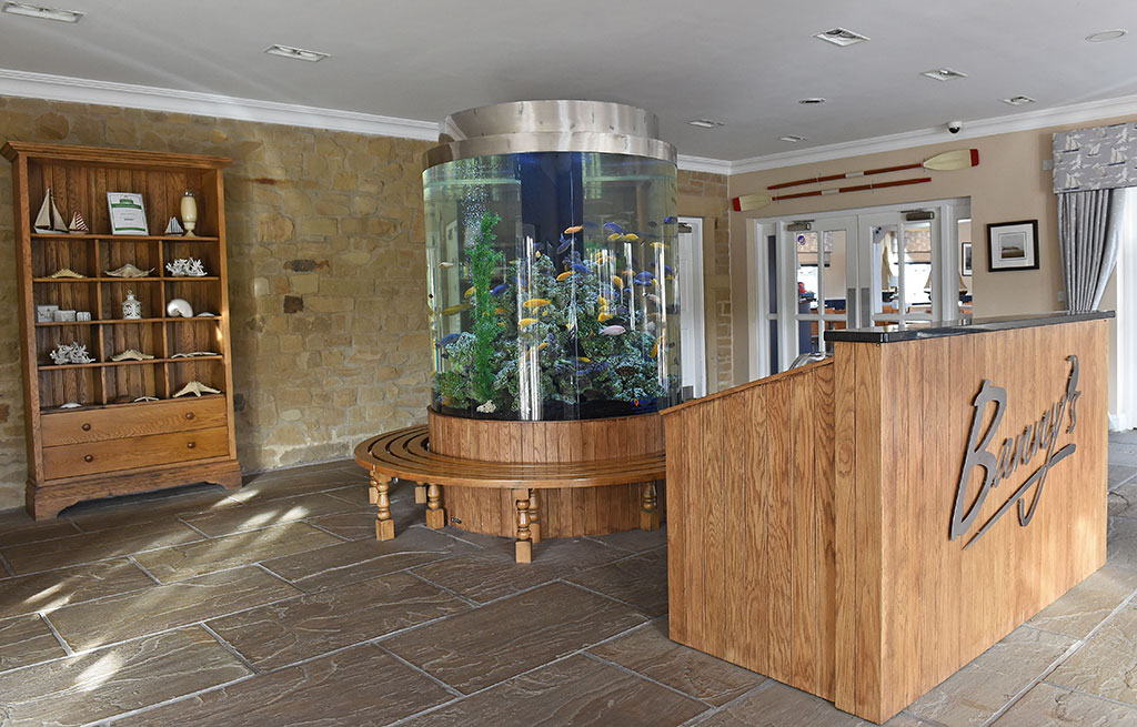 Custom Built Aquarium | Banny's Fish & Chip Restaurant