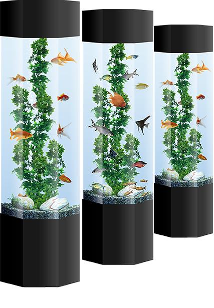 Aquarium Hire Aquarium Rental Aqualease