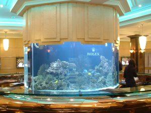 Cottrills bespoke aquarium