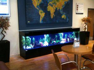 Land Rover bespoke aquarium