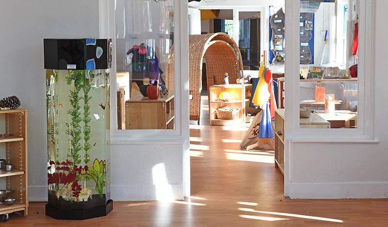 column-aquarium-blog-2