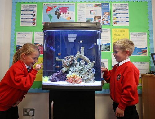 Coral Reef Educational Aquarium