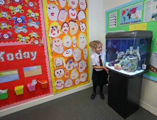 Coral Reef Educational Aquarium 2
