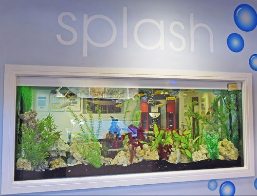 Splash – Bespoke