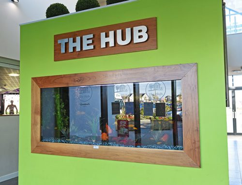The Hub – Custom Built