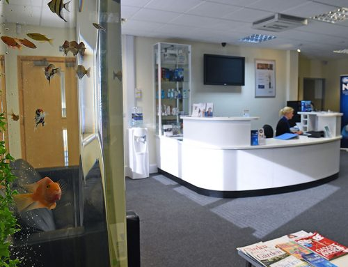 Petre Dental Surgery – 6ft Column with Tropical fish