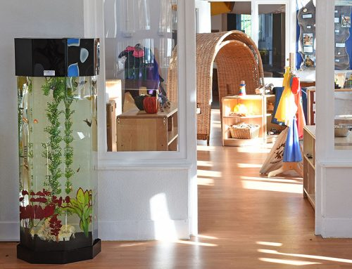 Fairfield Nursery School – 4ft Column with Coldwater fish