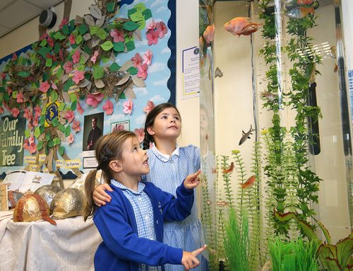 St Pauls RC Primary School – 6ft Base Column with tropical fish