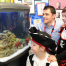 School Fish Tanks for Hire