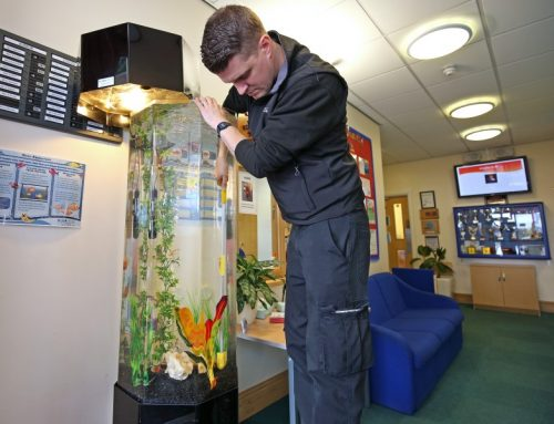 Our Aqualease Technician