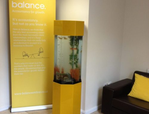 Business Branded Column Aquarium – Balance Accountants