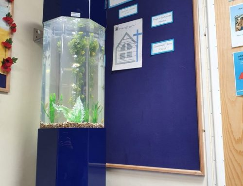Navy Blue Column Aquarium in School Setting