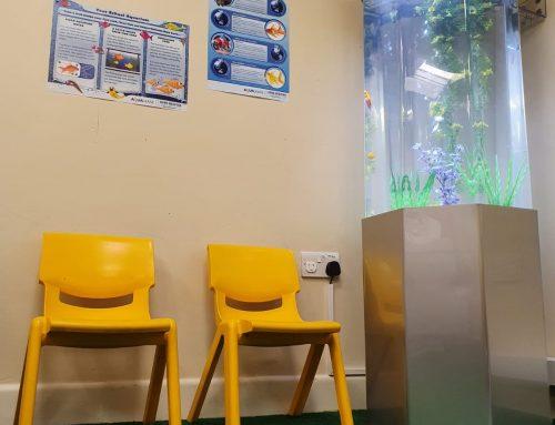 Column Aquarium – Ashworth Nursery School